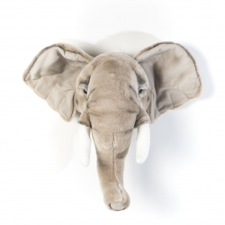 Tierkopf Trophäe Elefant George