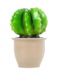 Lampe Kaktus rund