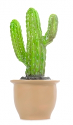 Lampe Fingerkaktus