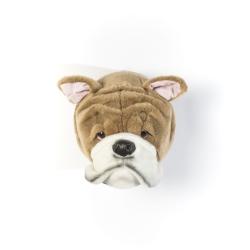 Tierkopf Trophäe Englische Bulldogge Matthew